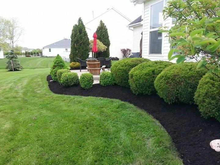 CJ Cutting Edge Lawn & Landscape image 20