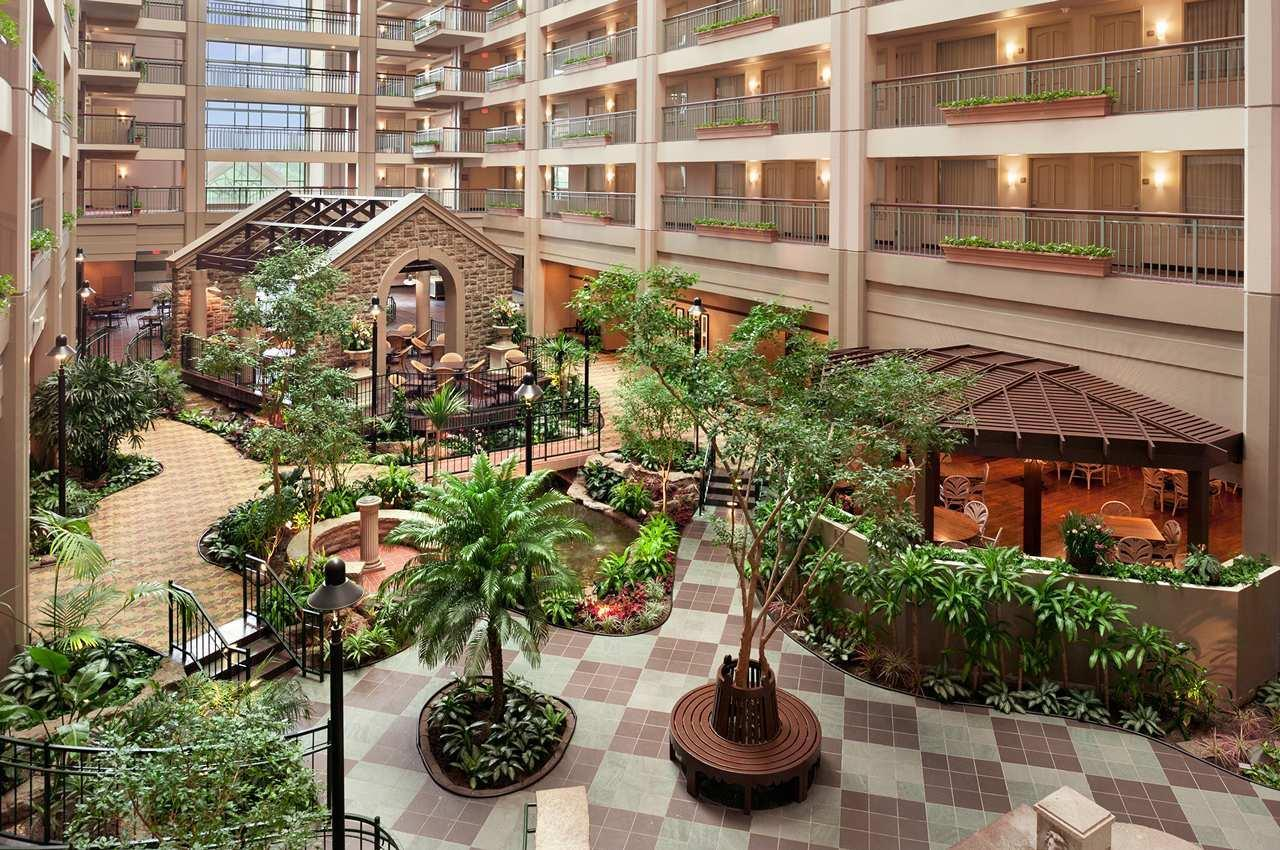 Embassy Suites by Hilton Chicago Lombard Oak Brook image 6