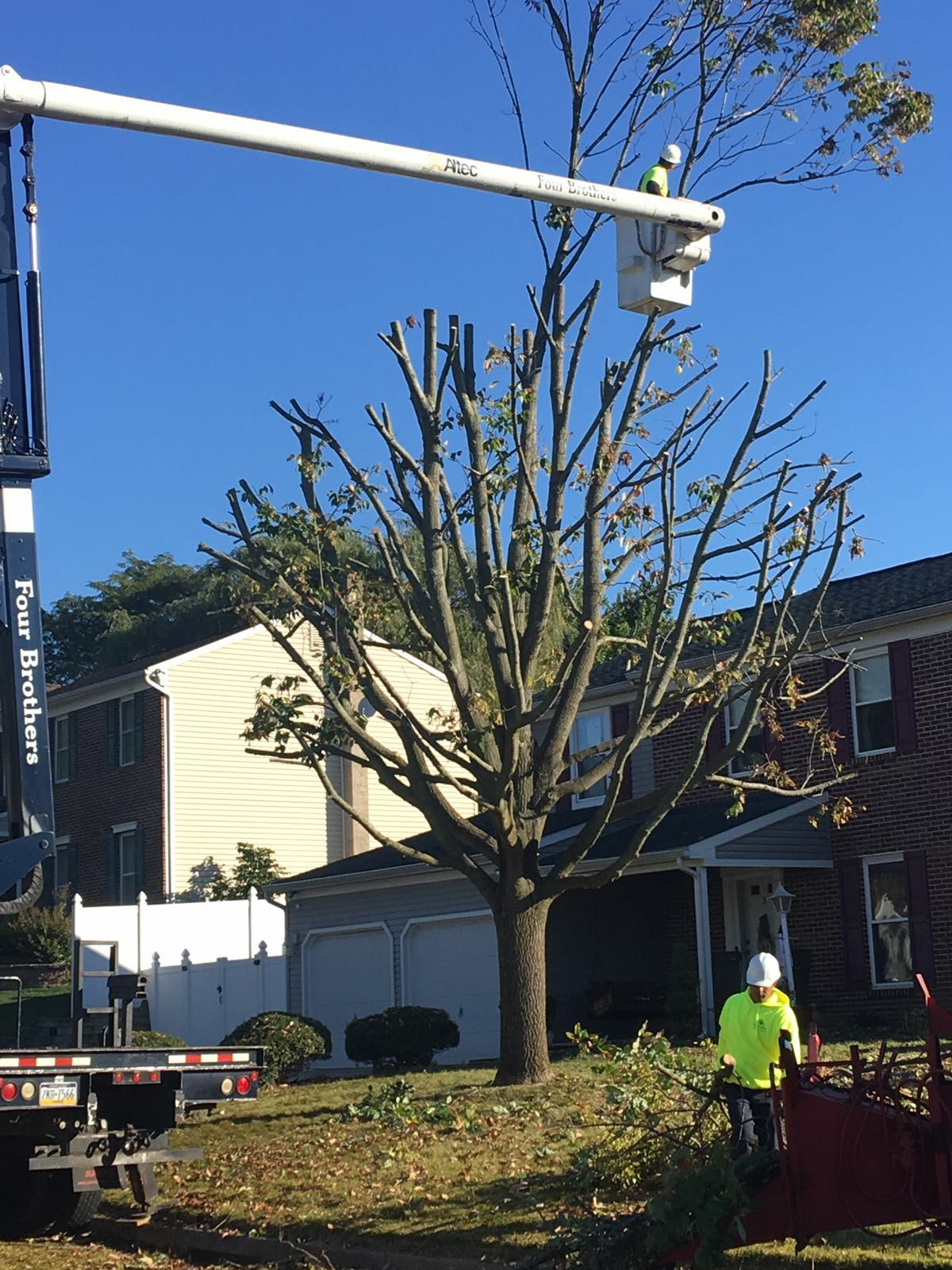 Four Brothers Tree Service Inc. image 32