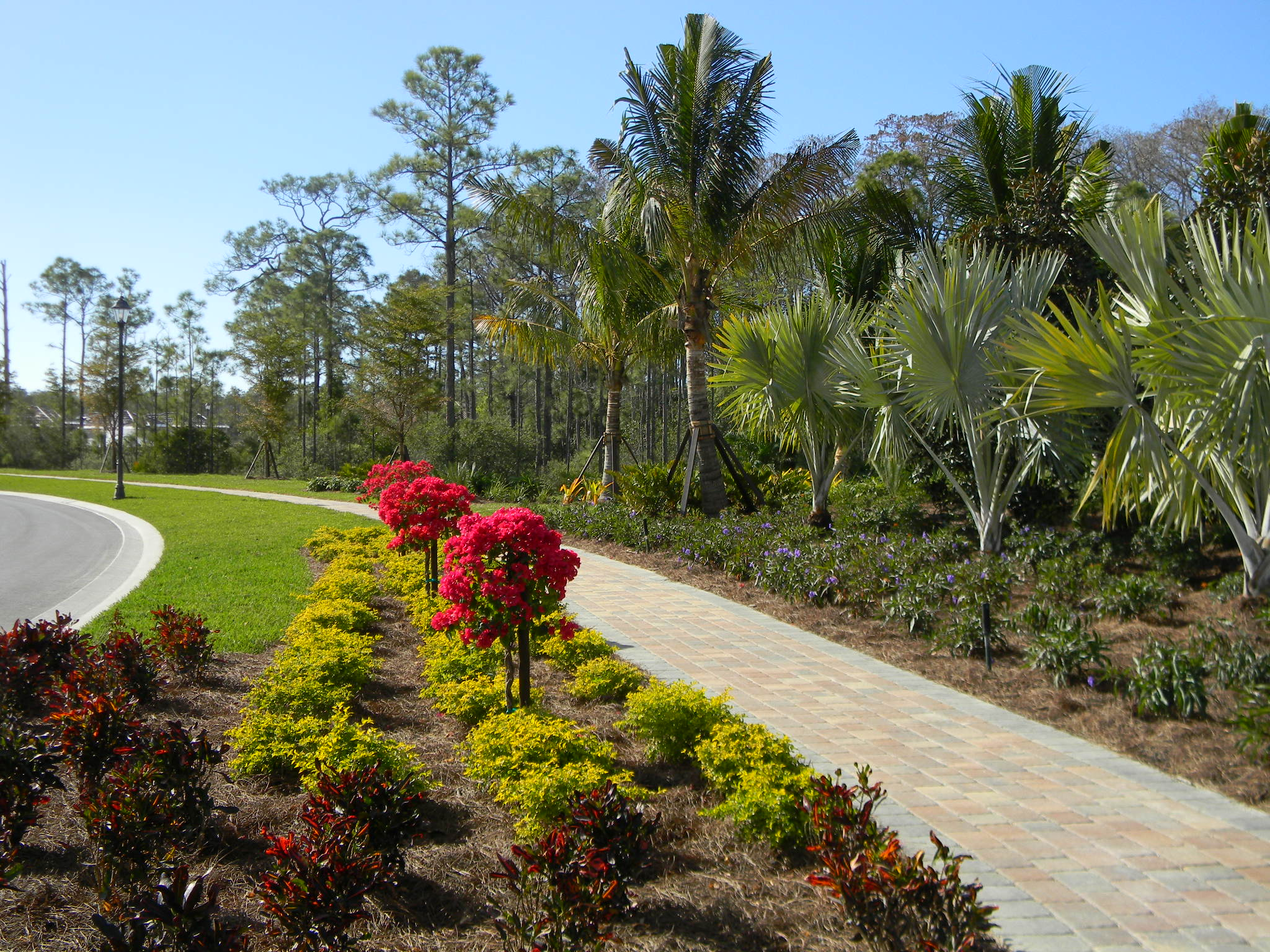 Crawford landscaping naples florida fl for Myers lawn and garden