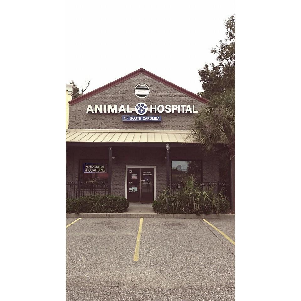Animal Hospital of South Carolina - Pawleys Island, SC 29585 - (843)979-4410 | ShowMeLocal.com