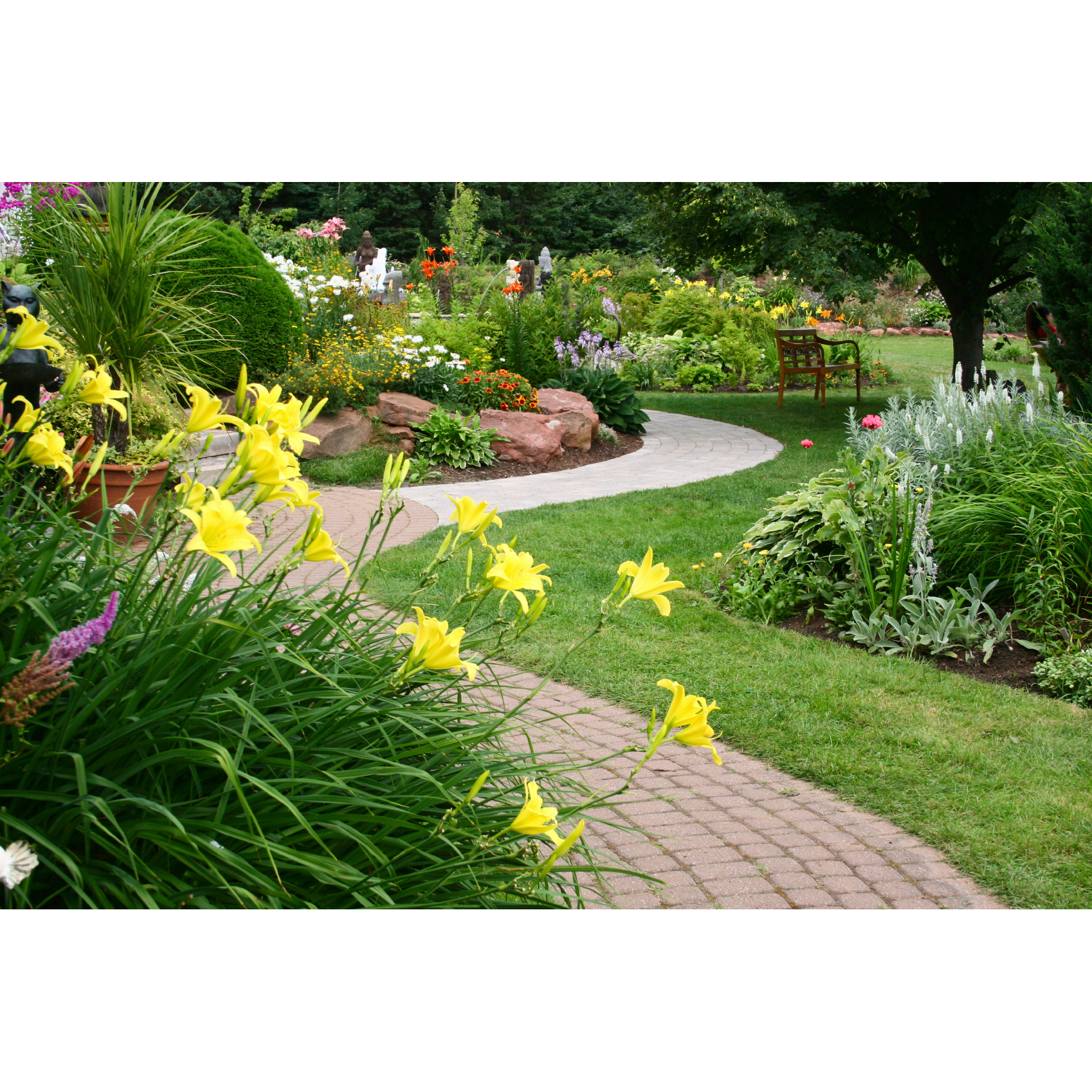 $25 MANZO'S LAWN CARE AND CLEANING IN LOMPOC BUELLTON SANTA YNEZ AND SANTA MARIA CCADTAR AT $25