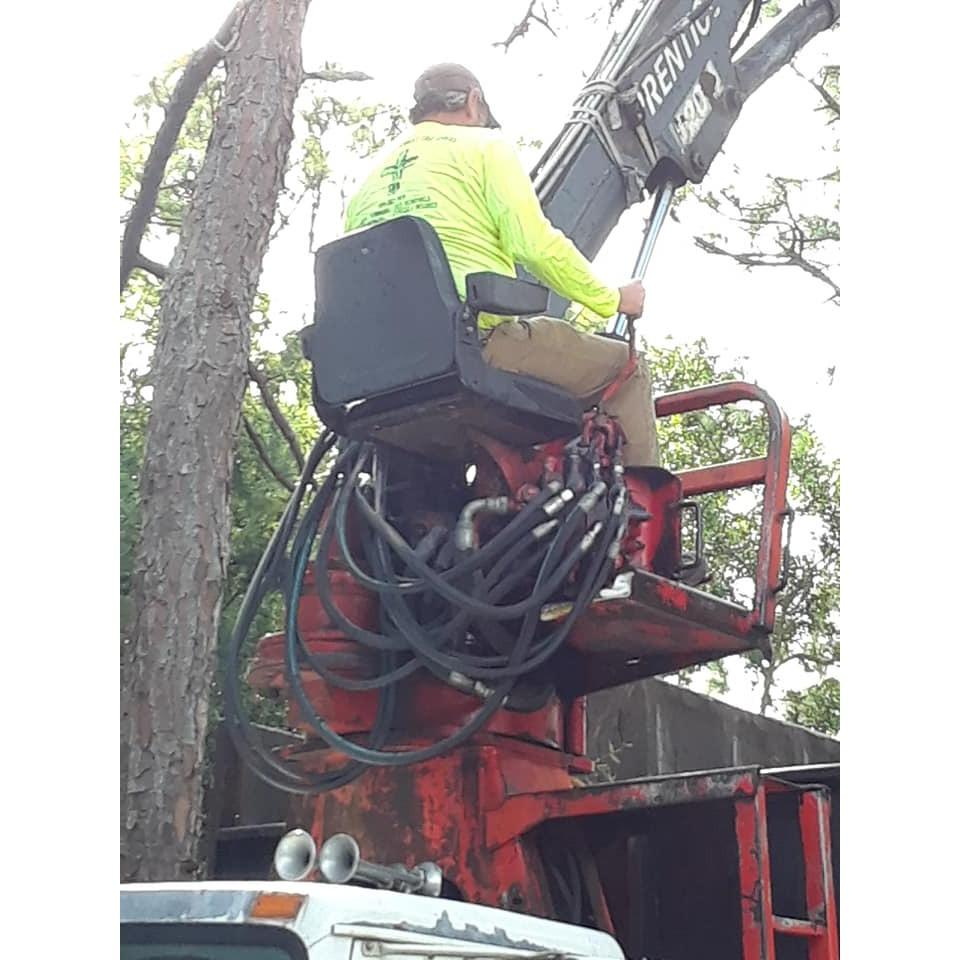 Climbin For Christ Tree Services and Bee Removal