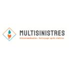 Multisinistre