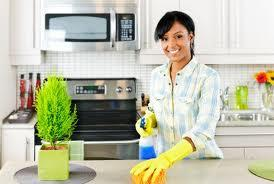 Professional Home Cleaning Inc