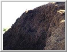 Marin Landscape Materials image 4