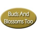 Buds And Blossoms Too LLC - Richland, WA - Florists