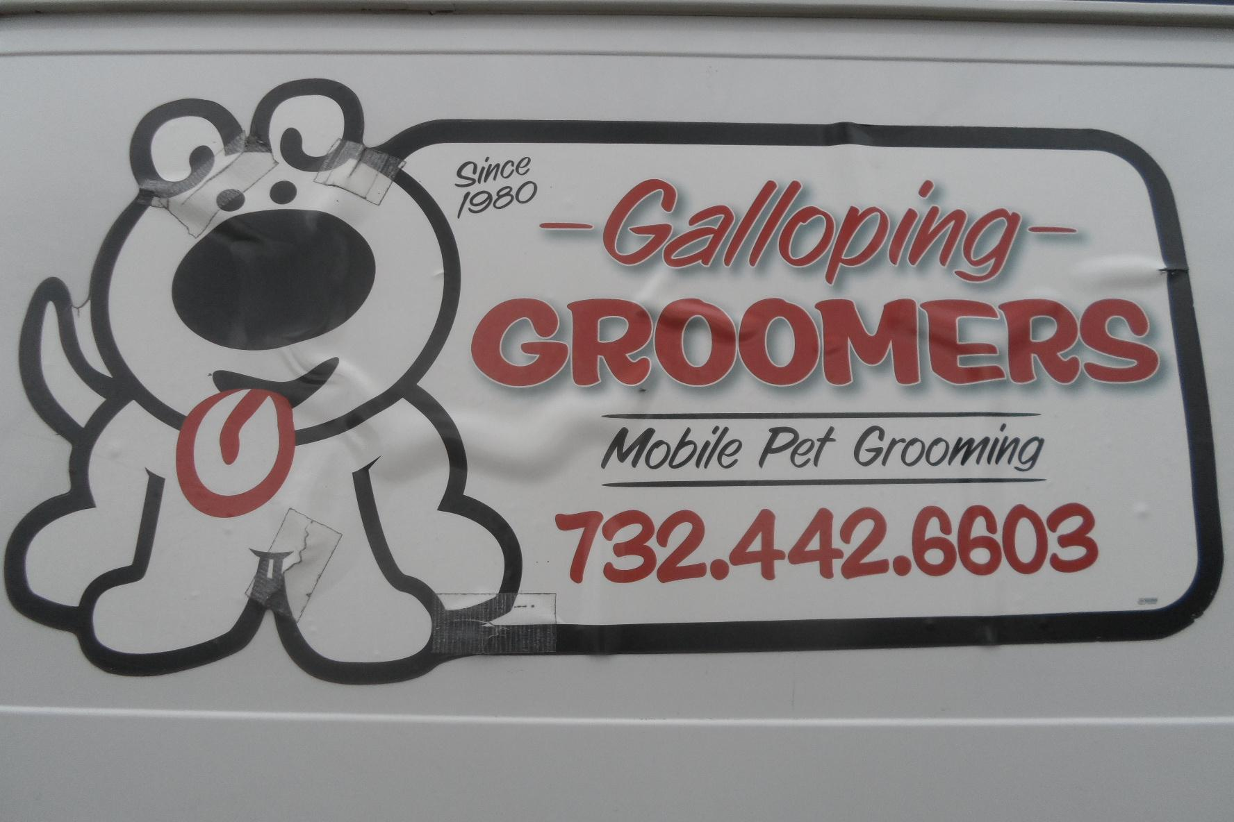 Galloping Groomers