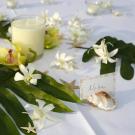 Simple Kona Beach Weddings - Kailua-Kona, HI 96740 - (888)582-5775 | ShowMeLocal.com