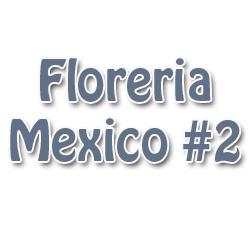 Floreria Mexico #2