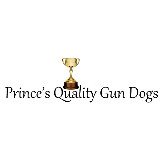 Princes Quality Gun Dogs - Pittsburg, KS - Breeders