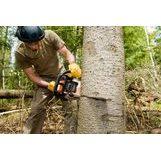 Kincaid Tree Surgery