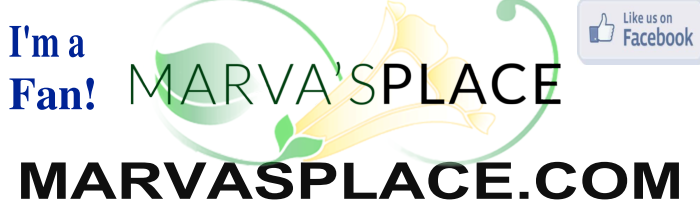 Marva S Place Furniture Consignment