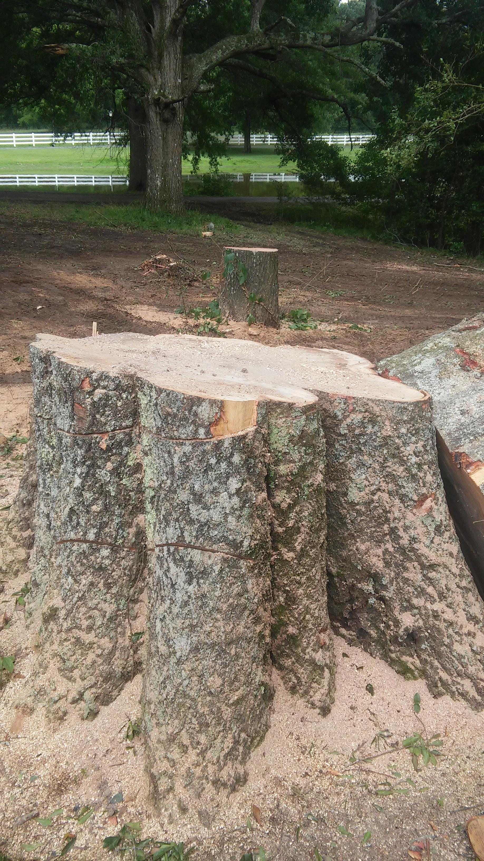 Cornerstone Tree Service, LLC