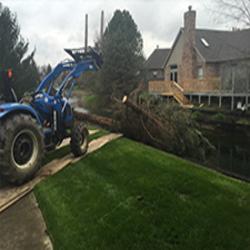 Jt Tree Service
