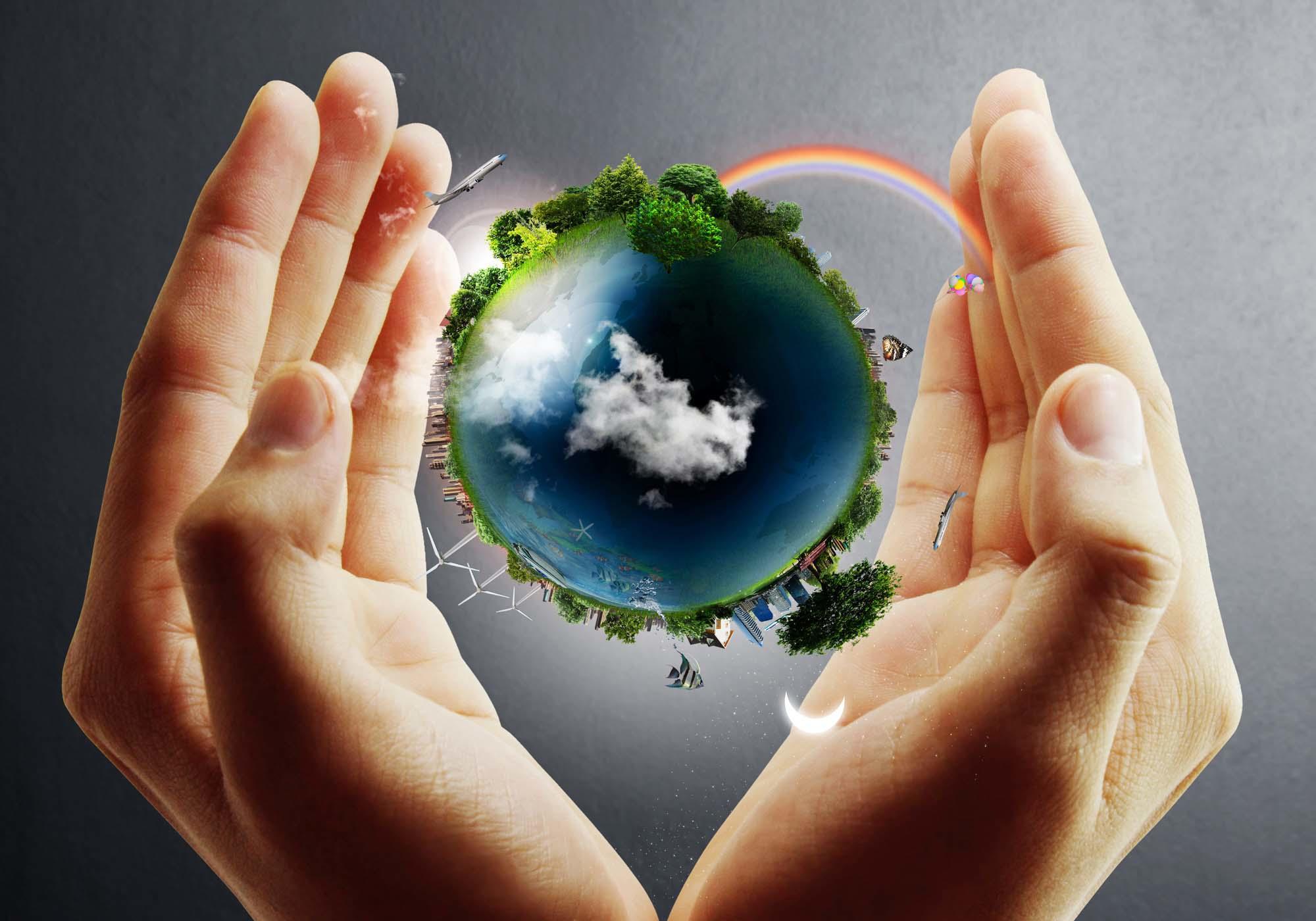 Eco Hydroseeding