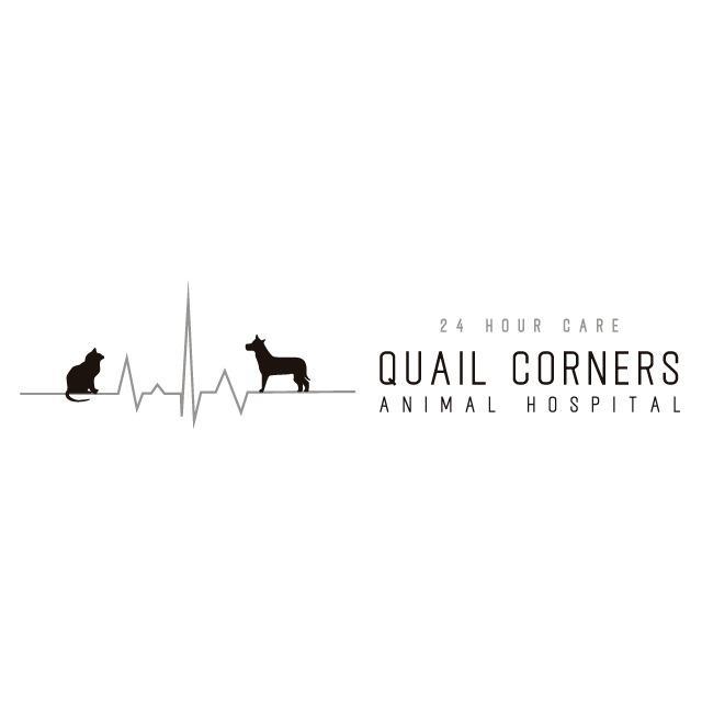 Quail Corners Animal Hospital - Raleigh, NC 27609 - (984)664-0024 | ShowMeLocal.com