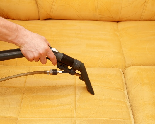 South Miami Carpet Cleaners in Miami, FL 33173 - ChamberofCommerce.com