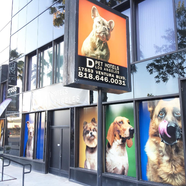 d pet hotels los angeles encino california