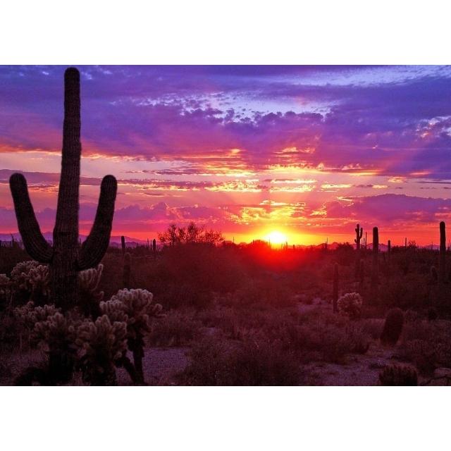 We Buy Houses Phoenix Arizona