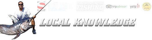 Fish local knowledge in fort lauderdale fl 33316 for Local knowledge fishing
