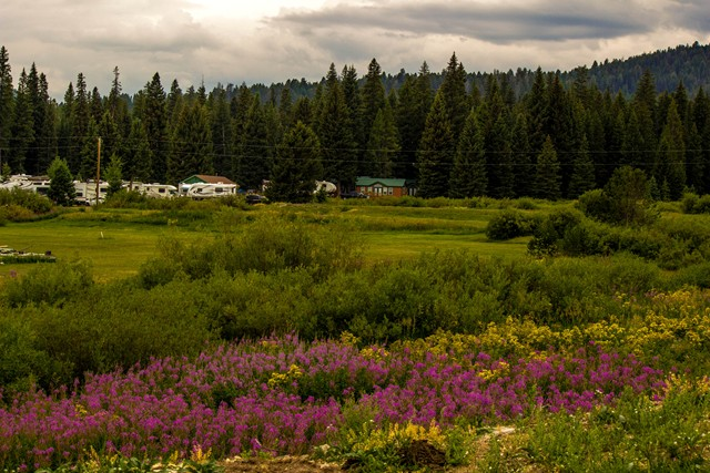 Yellowstone Park Mountainside Koa Journey Coupons Near