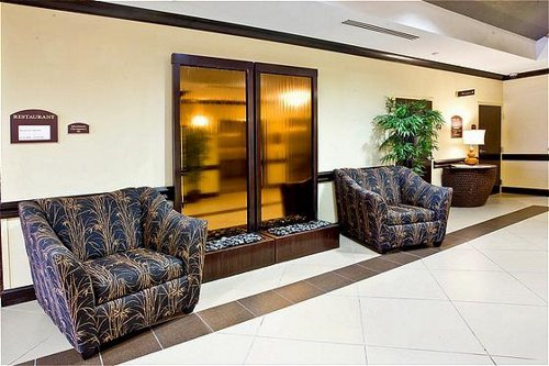Holiday Inn Express & Suites Tampa -Usf-Busch Gardens image 1