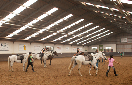 Lucky Stable Manege