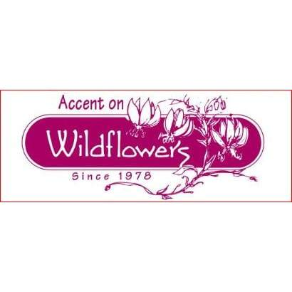 Accent On Wildflowers