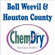 Boll Weevil ChemDry