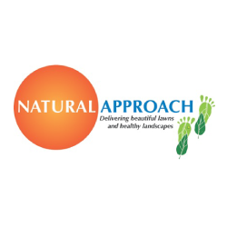 natural approach The natural approach to hormonal balance — help your body do its job t he problem of hormonal imbalance is often oversimplified in many conventional doctors' offices this lack of support leaves women with one-size-fits-all solutions that don't get to the root of their symptoms or offer lasting results.