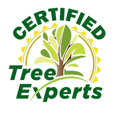 Certified Tree Experts LLC