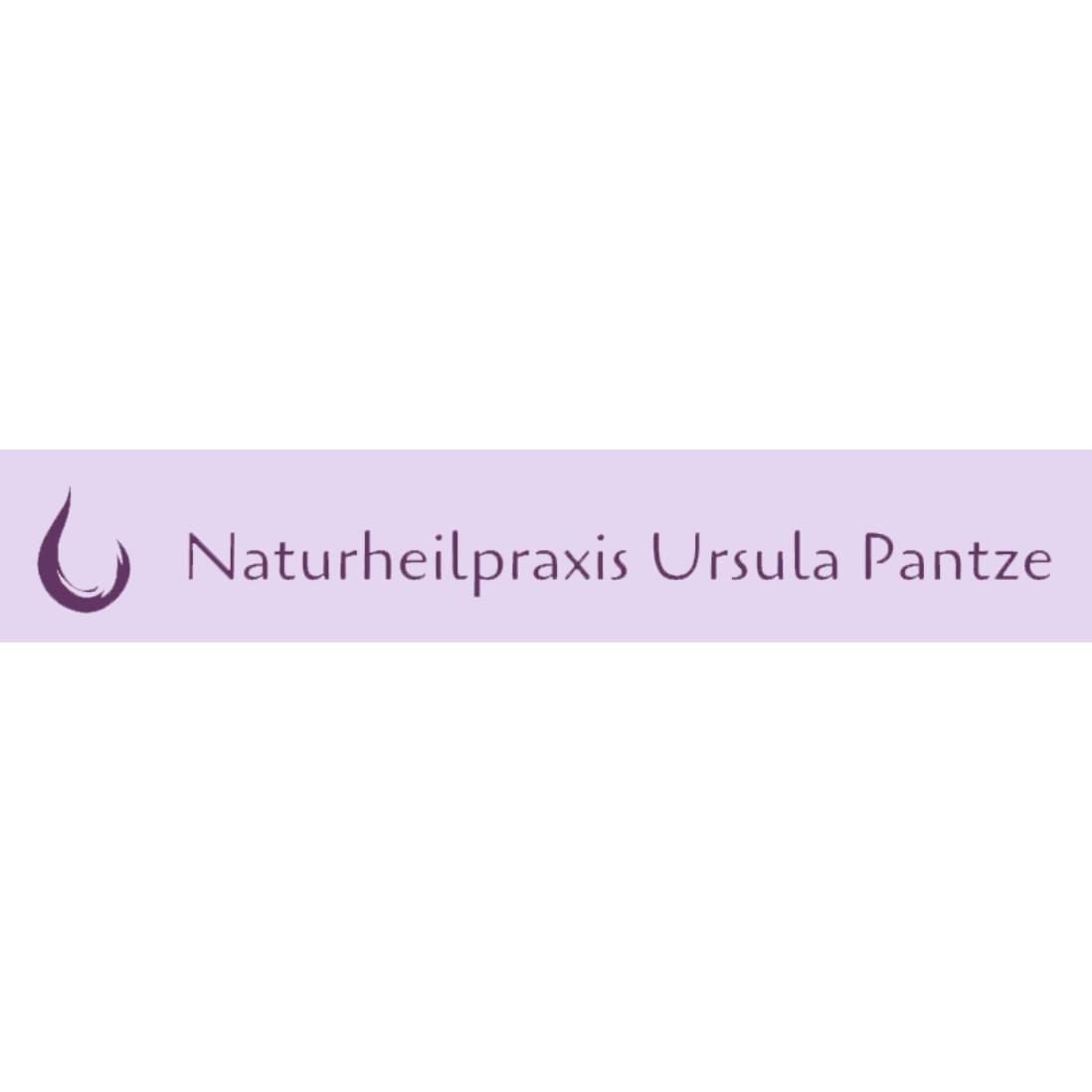 Bild zu Heilpraktikerin Ursula Pantze in Neumarkt in der Oberpfalz