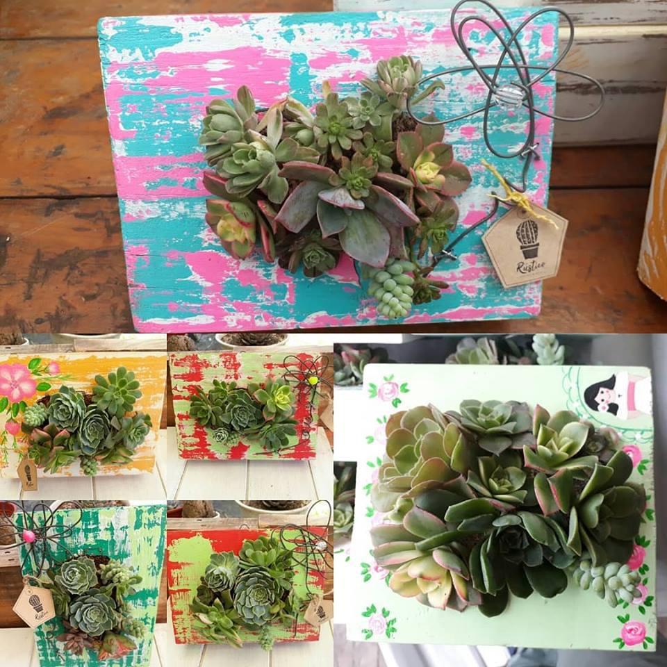 Rustico Cactus y Deco