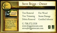 Business Card for Briggs Tree Service in Lansing Illinois