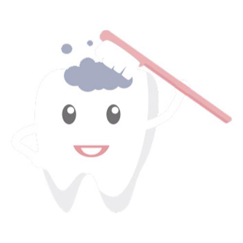 Bild zu Zahnarztpraxis Dr. Reinhold Senser in Nürtingen