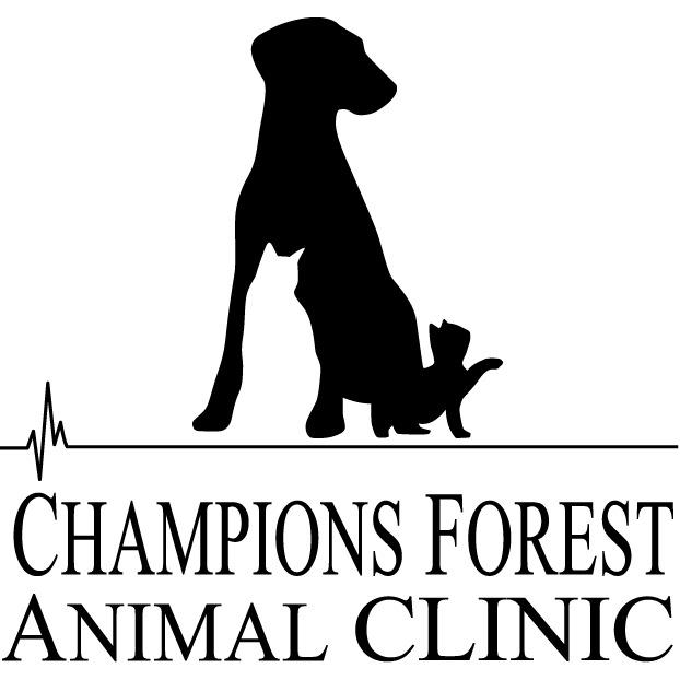 Champions Forest Animal Clinic