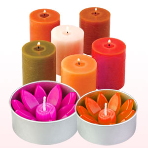 Natures Garden Candle Soap Making Supplies In Wellington Oh 44090