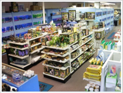 Brian 39 s tropical aquarium pets coupons near me in rocky for Exotic fish store near me