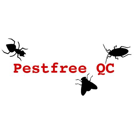 Pestfree QC - Davenport, IA 52803 - (563)499-1419 | ShowMeLocal.com