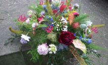 KNSM Flowers