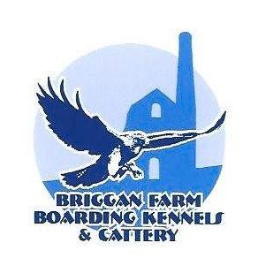 Briggan Farm Boarding Kennels & Cattery