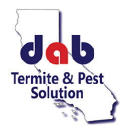 Dab Termite & Pest Solutions Inc