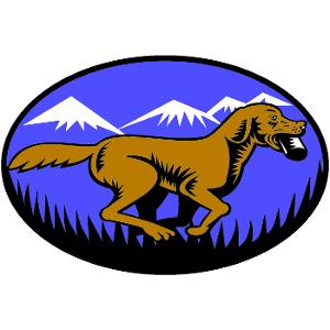 FetchMasters, LLC