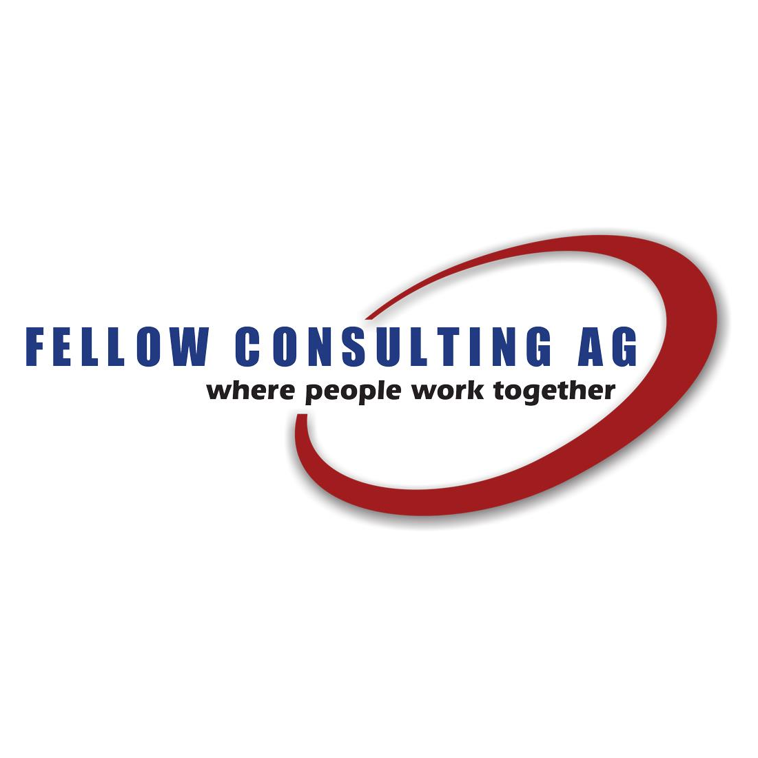 Fellow Consulting AG - CRM Systeme