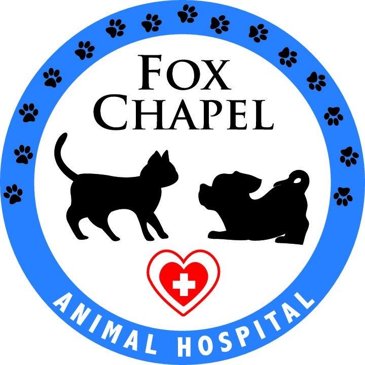 Fox Chapel Animal
