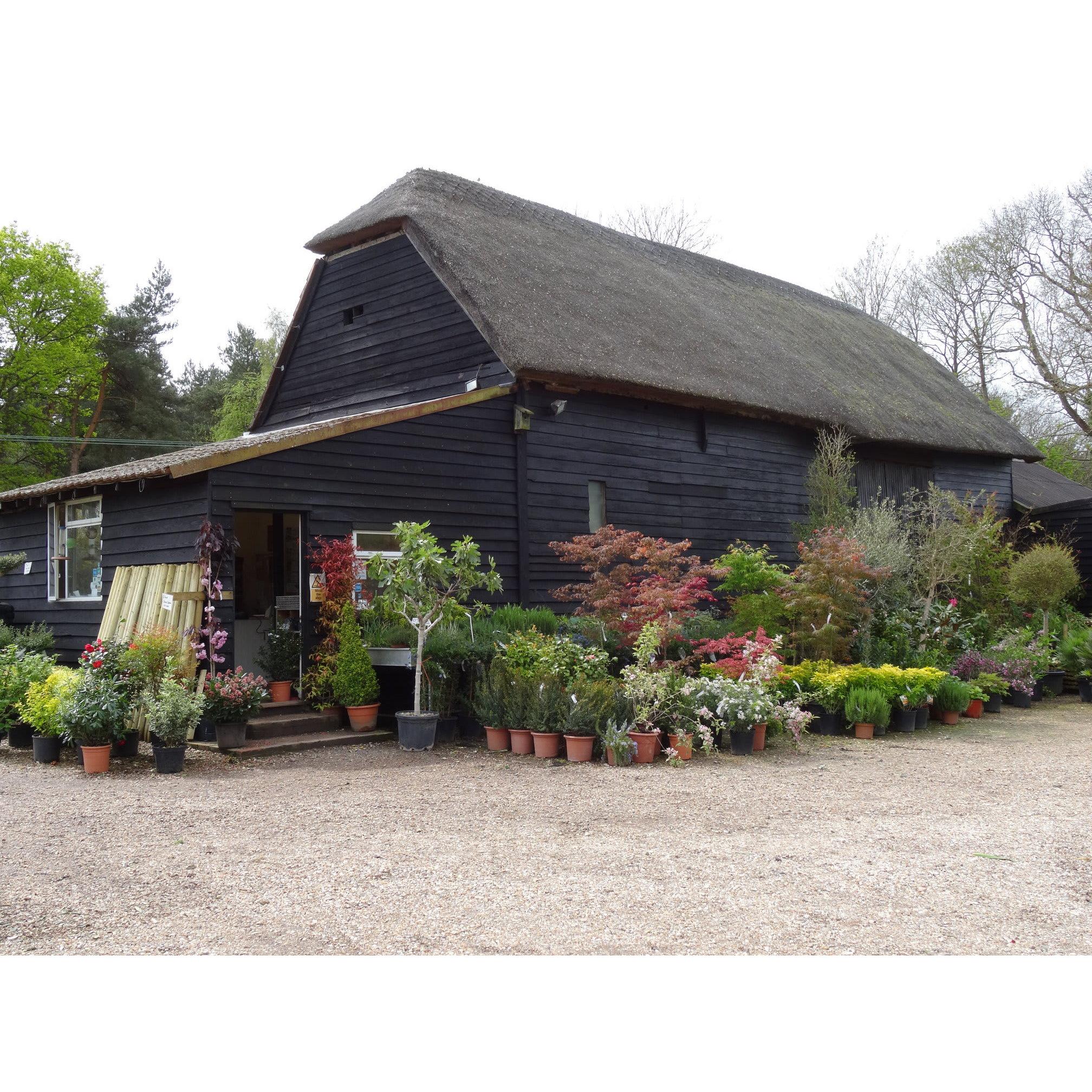 Arundel Arboretum Ltd - Arundel, West Sussex BN18 0AD - 01903 883251 | ShowMeLocal.com