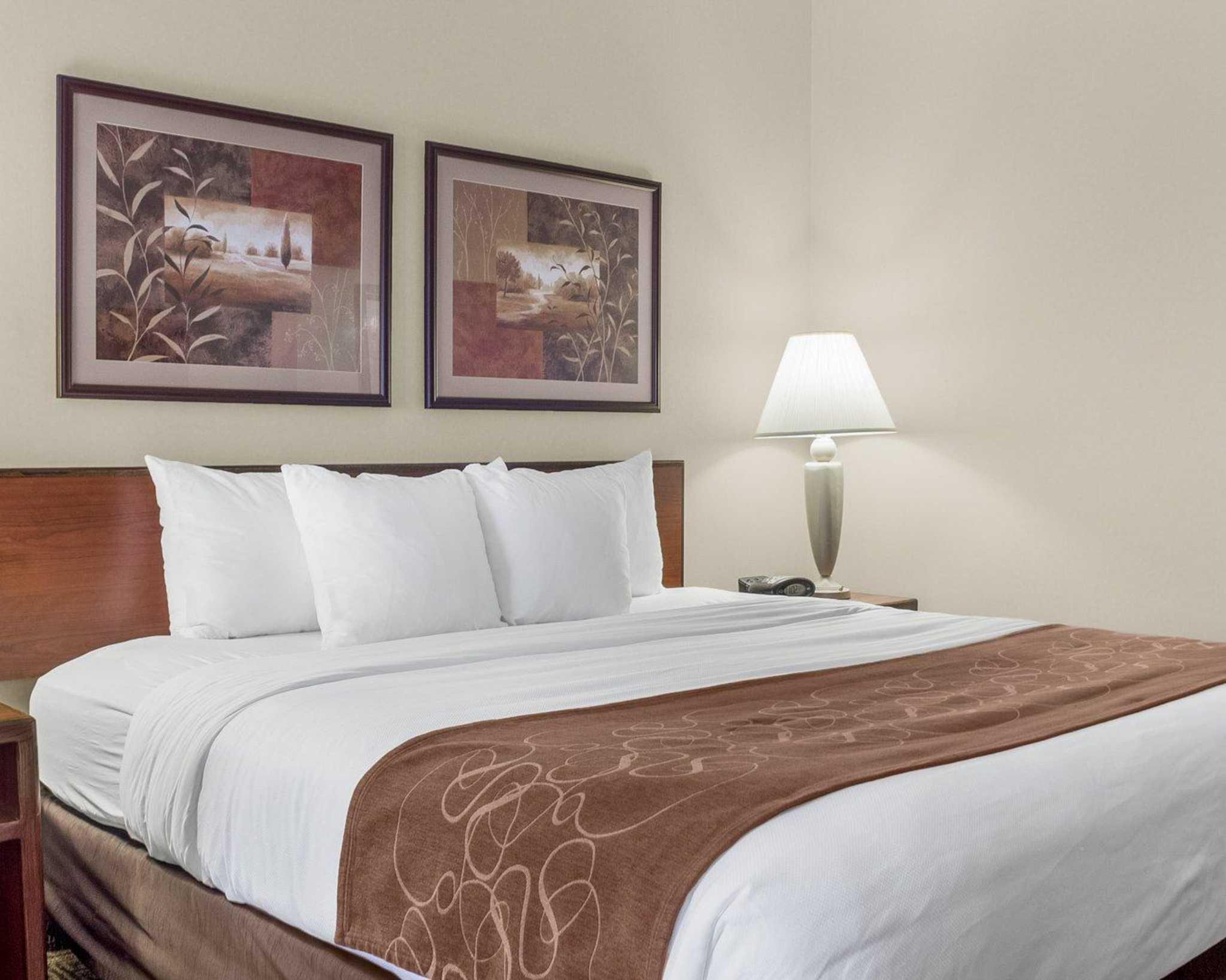 Comfort Suites Bismarck North Dakota Nd Localdatabase Com