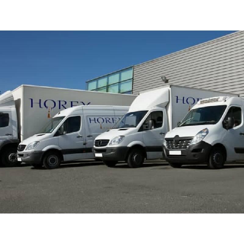 Horex Logistics Ltd - Birmingham, West Midlands B4 6AT - 01902 631313 | ShowMeLocal.com