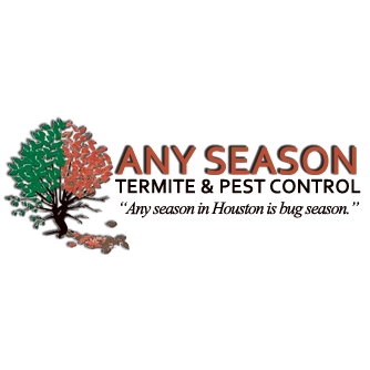 Any Season Termite & Pest Control - Houston, TX 77089 - (281)484-6740 | ShowMeLocal.com